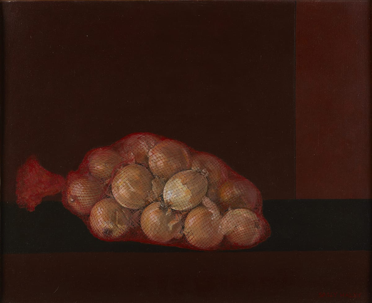 Yellow onions in a commercial red, mesh bag depicted with a high level of realism and resting against a backdrop of four rectilinear planes in deep, reddish shades.