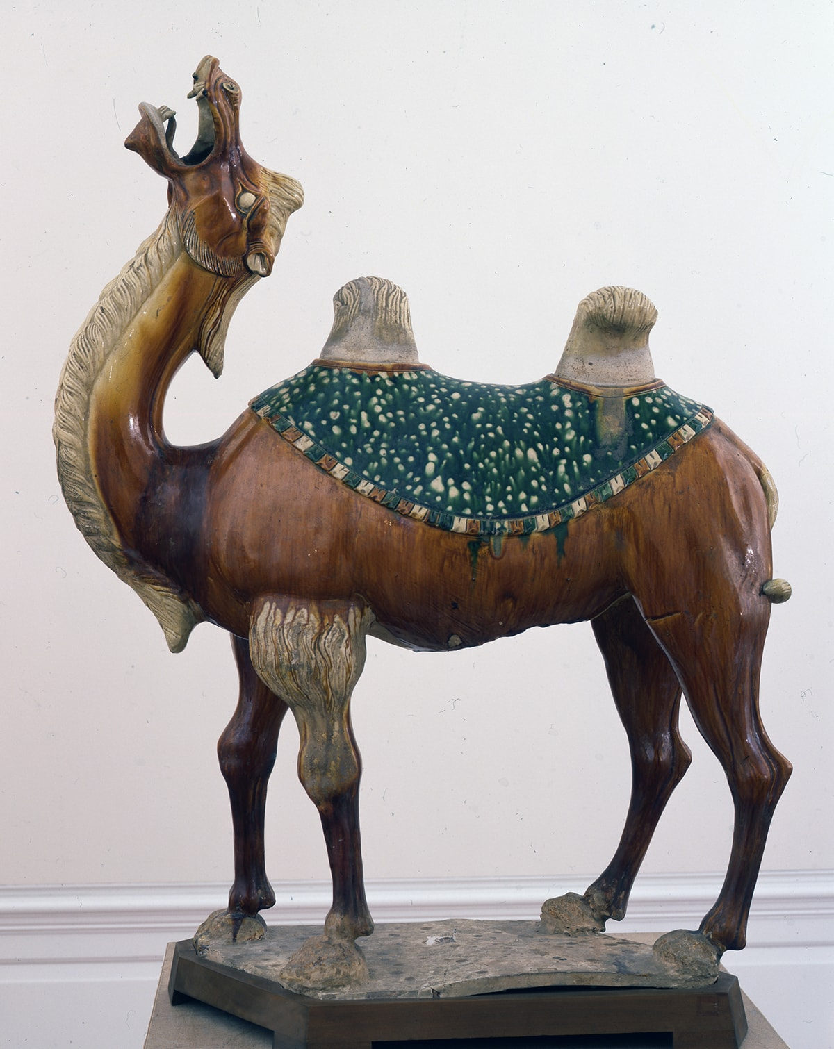 Sculpture of a camel viewed in profile facing left, its head thrown back, with mouth open, teeth and tongue visible. It has a small ear and round beige colored eye opened wide. All four legs are visible from the side view; the legs behind one step ahead of those closest to the viewer. Its body, neck, and head are smooth and are glazed in medium to light brown tones. In some areas the glazing appears streaky and drippy; a band of dark brown rings the camel's neck at its base. Deep incising creates longish, shaggy fur in a creamy beige color on the camel's head, mane, and underside of the neck running down to its torso. A deep green blanket in the shape of a half circle covers the camel's back. Two furry textured humps protrude through two openings of the blanket. A multitude of creamy beige dots decorate the blanket and appear runny on the green background. It is edged with a fringe alternating between dark brown, creamy beige, and deep green. The camel's foreleg has tufts of creamy beige, shaggy fur at the top. The camel stands on sturdy looking, knobbly legs ending in large wide hooves that appear rough and unglazed and are attached to an uneven, rough, unglazed, rectangular base resting on a modern wooden platform.
