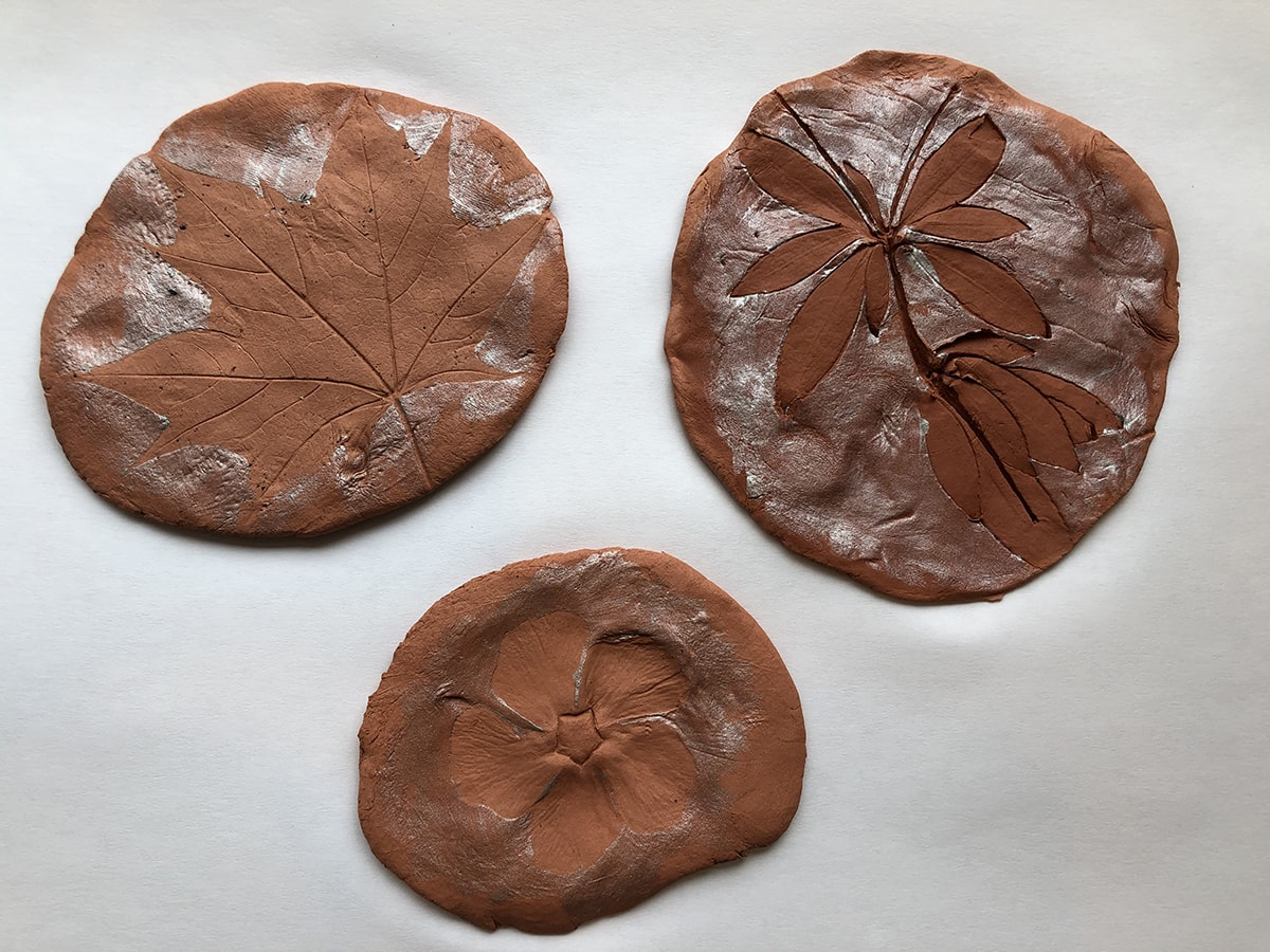 Three large brown circles with impressions. Left impression of a large maple shaped leaf with deep veins. Right: Impression of plant with multiple stems and approximately six leaves on each side. Bottom: Impression of flower blossom with five round leaves, fine veins, and a star shaped center.