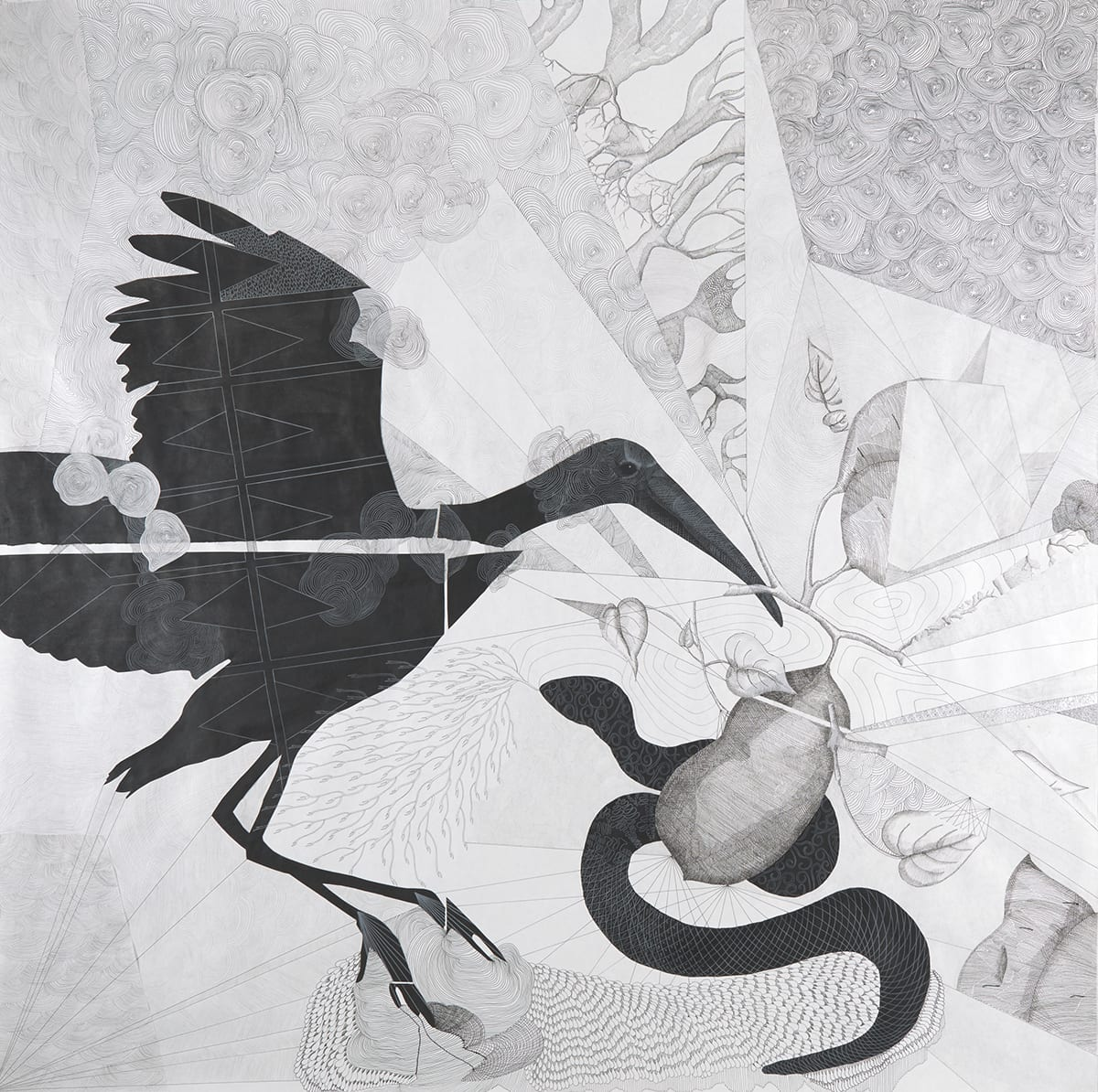 Promise and Purpose, the Ancestor's Dream, Kirsten Furlong, 60 x 60 inches, collage, ink, graphite and colored pencil on paper. A square black, white and gray work depicting a wood stork with outstretched wings and a long bill, a patterned snake and large sweet potato. The black wood stork, shown from the side and facing right, occupies the left half of the work with its wings and legs extended as if in the act of landing. It has a small smooth head with a long bill and feet and its surface is pattern in geometric and organic shapes. The stork's form is segmented into four pieces that have been collaged together. To the lower right is a large sweet potato sprouting leaves and other partially obscured sweet potatoes. Underneath the potato is the black snake with curlicue patterned head and scaly body. The background is divided into areas of various patterns rendered in soft gray within sections that radiate from different points on the work.