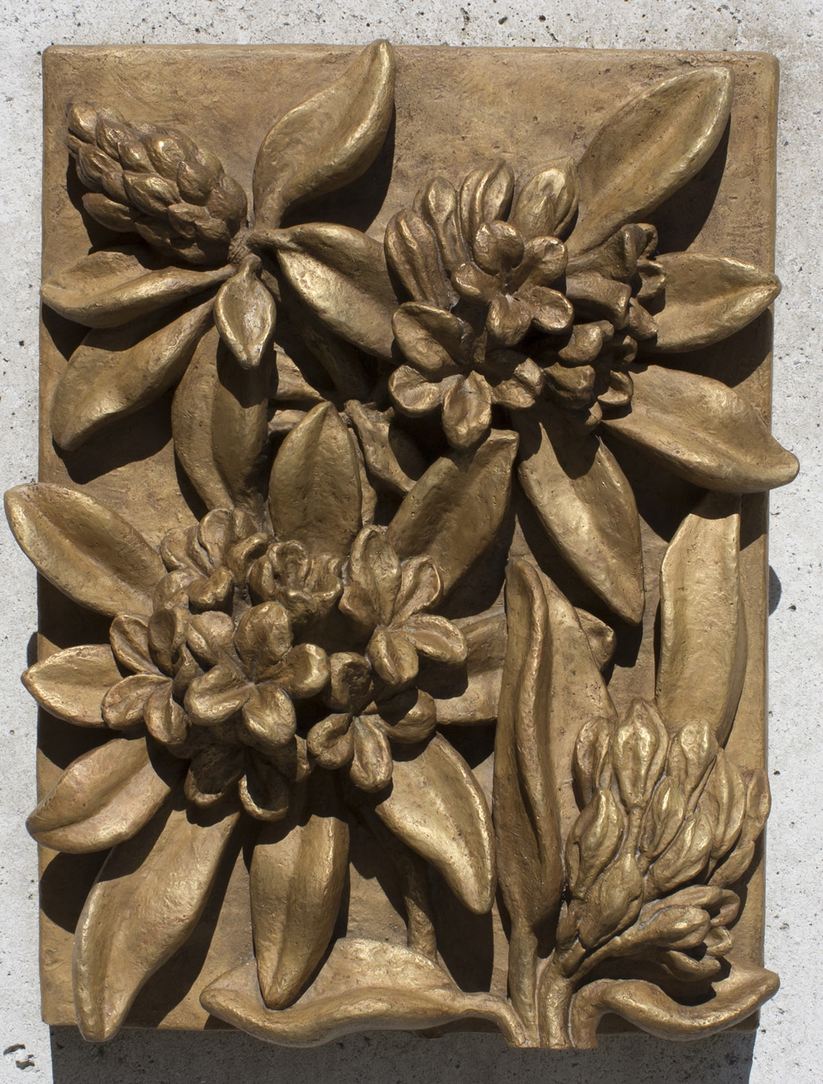 """Image description: """"Rhododendrons."""" Marie Louise Feldenheimer. 1933. Bronze. 19 1/2 x 15 1/2 x 6 inches. A rectangular, monochromatic, bronze plaque with four rhododendron flowers in relief. A tight bud appears in the upper left corner, fringed with leaves and pointing toward the corner. Two, fully open flower clusters form a diagonal from the lower left corner to the upper right corner, each framed by large, smooth leaves. In the lower right corner, a partially open flower is seen from the side, facing toward the edge, the edges of its leaves curve gently. Strong sunlight on the relief creates deep shadows and glossy areas, suggesting the shine of actual rhododendron leaves."""