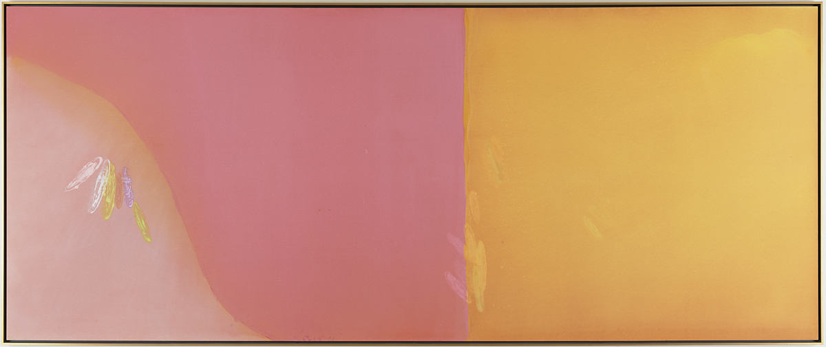 """Image Description: Larry Poons. """"Open Country"""". 1968. Acrylic on canvas. 84"""" x 204"""". Large colorful painting with a thin wood frame. The background on the left two thirds is a muted rose color and the right third is a yellow orange color. A straight line separates the two colors with a few diagonal brush strokes on the pink that create a lighter ink color and a series of overlapping vertical brushstrokes on the edge of the yellow. There are two additional light yellow strokes above and out to the right. There is also an area of lighter yellow blended into the upper right corner. The bottom left of the painting is a lighter pink color with an organic line in the shape of a steeply sloping hill. Just below the slope is a series of six brush strokes—pink, white, yellow, red, purple, yellow."""